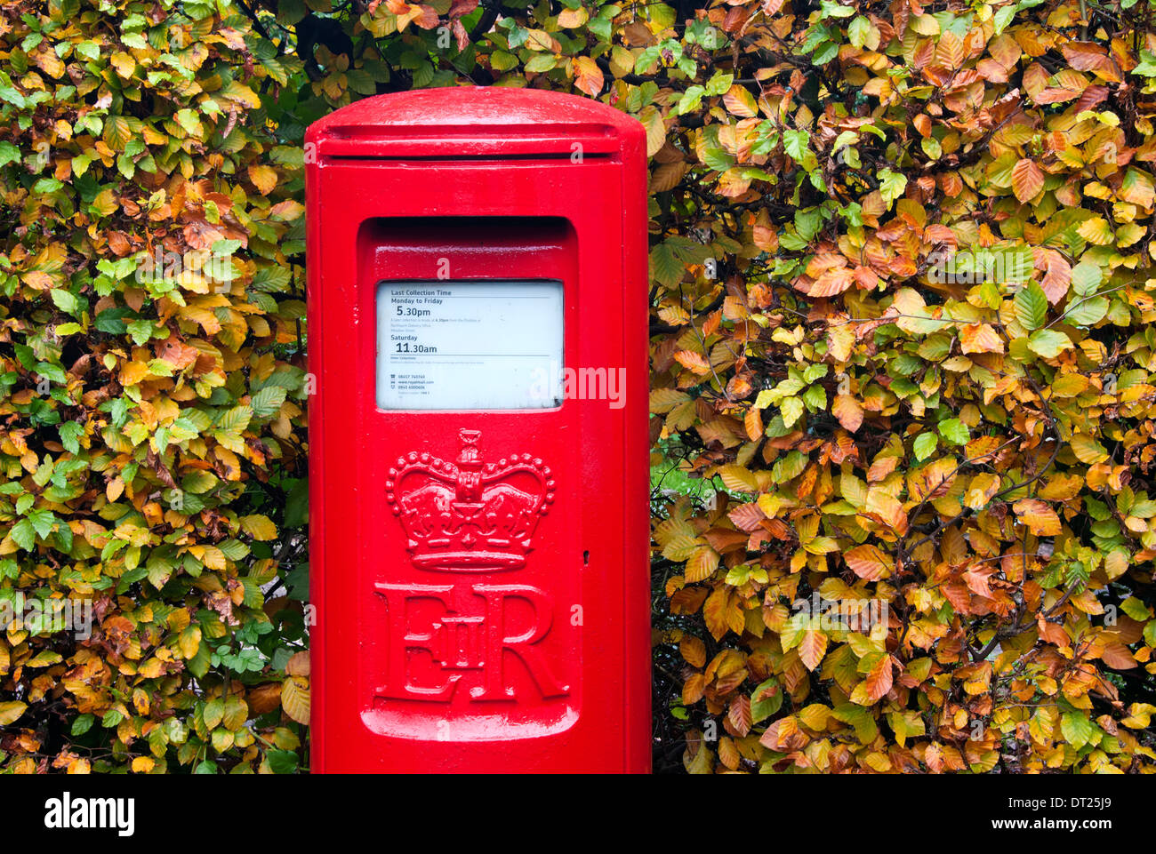 Bright Red Post Box Surrounded by Autumnal Leaves, Cheshire, England - Stock Image