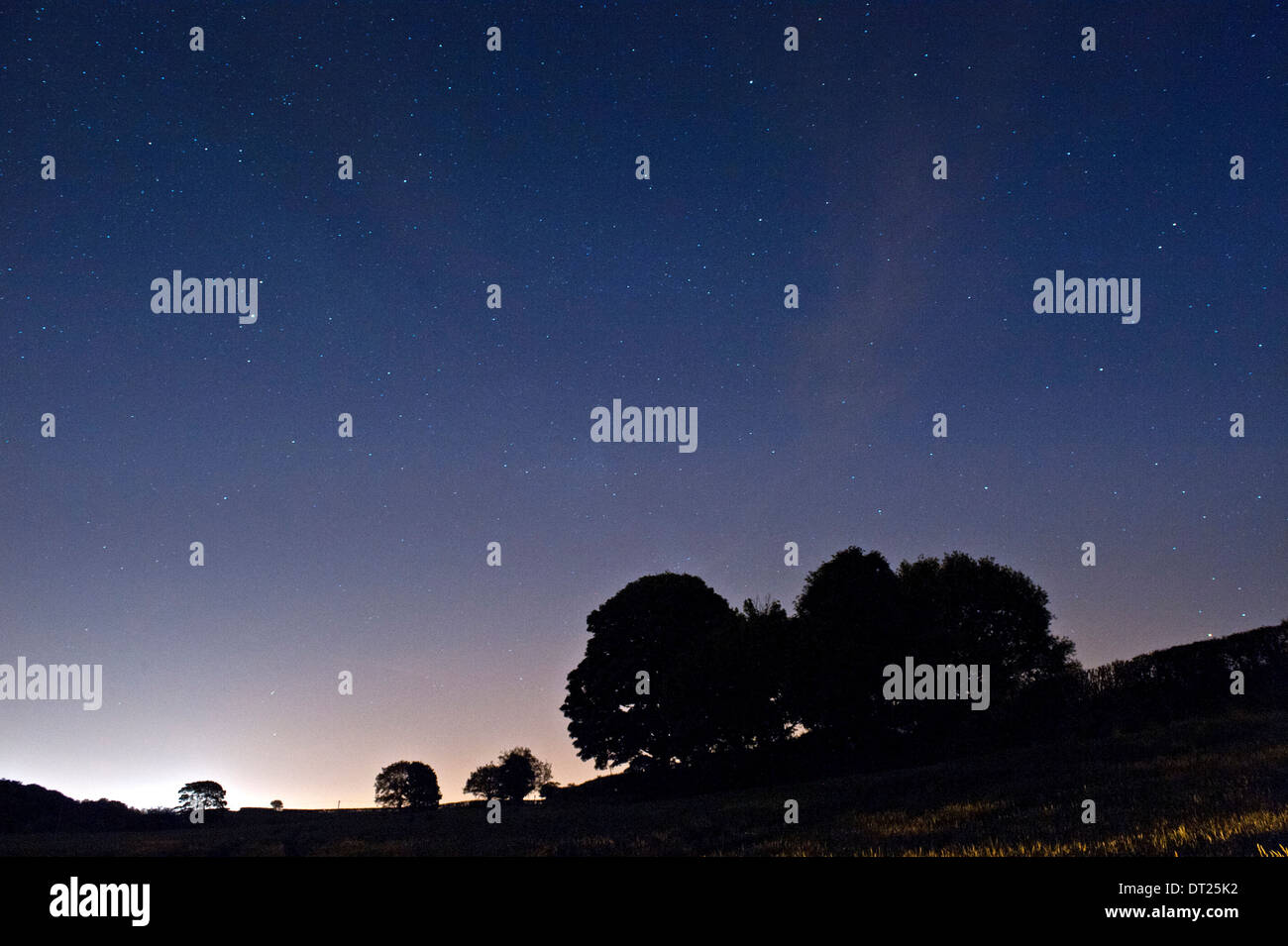 The Night Sky above Fields and Trees, Cheshire, England, UK - Stock Image
