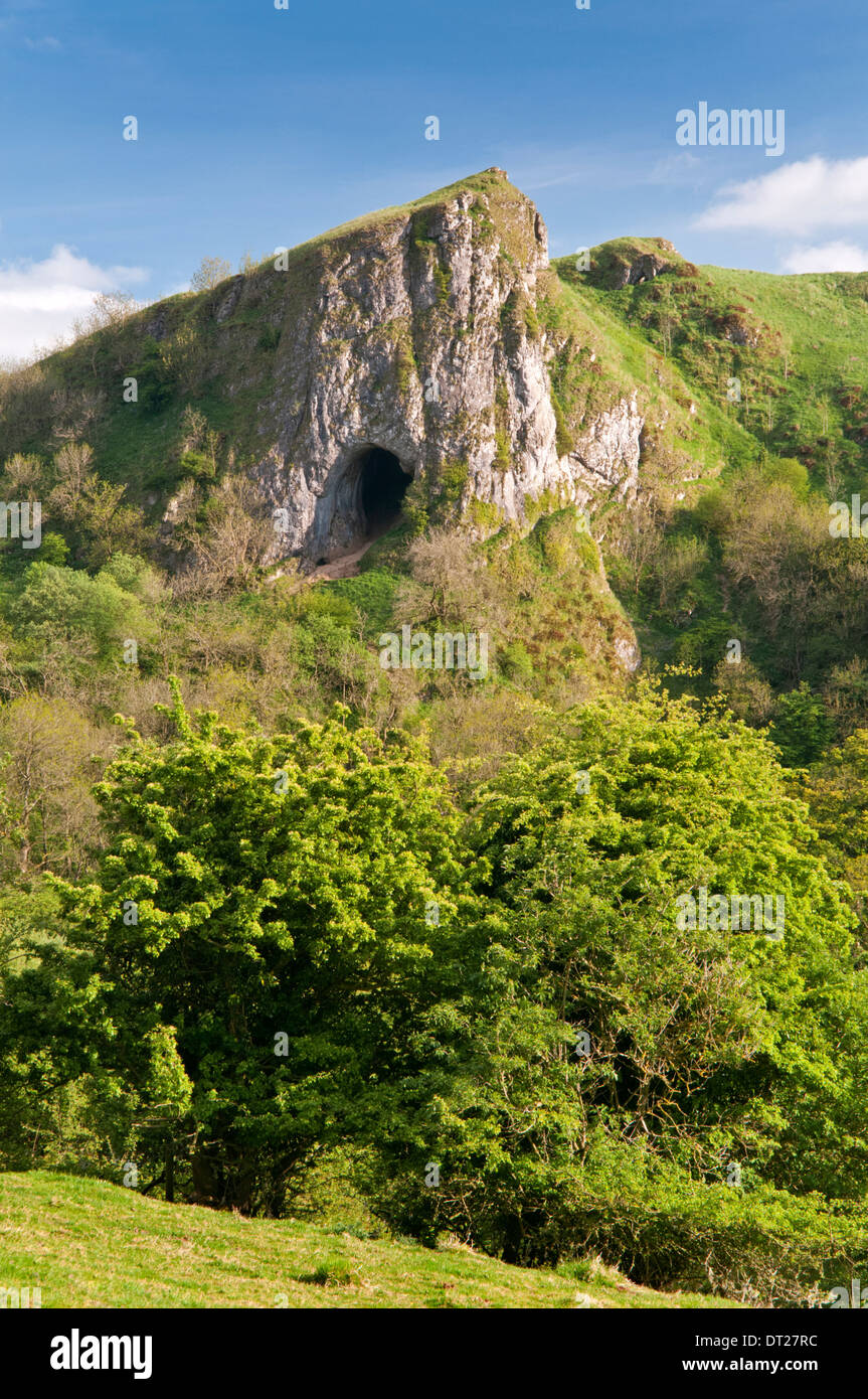 Thor's Cave, On the Manifold Way, Manifold Valley, Peak District National Park, Staffordshire, England, UK - Stock Image