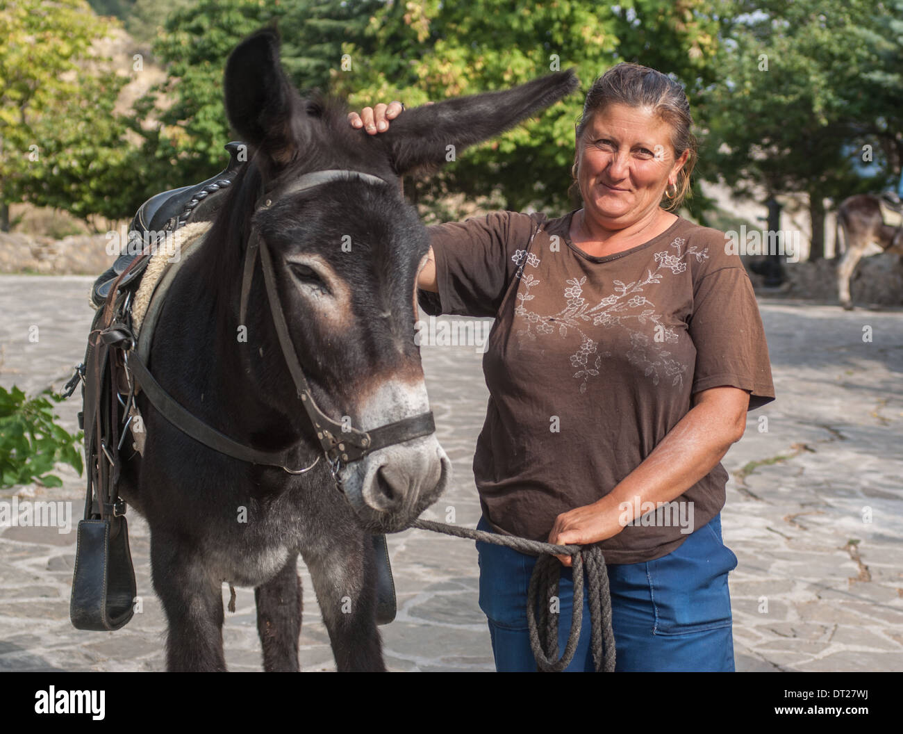 donkey and handler  woman and donkey - Stock Image