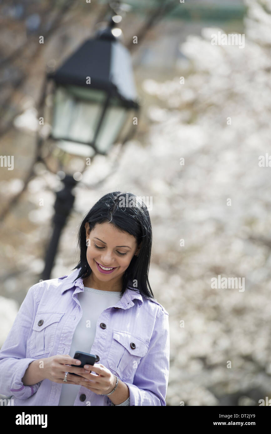 Spring time New York City park White blossom on the trees A young woman checking her mobile phone and smiling - Stock Image