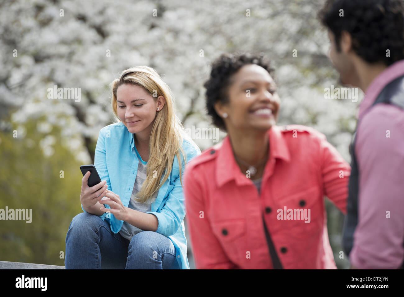 Spring time New York City park White blossom on the trees A woman sitting on bench holding her mobile phone A couple beside her - Stock Image