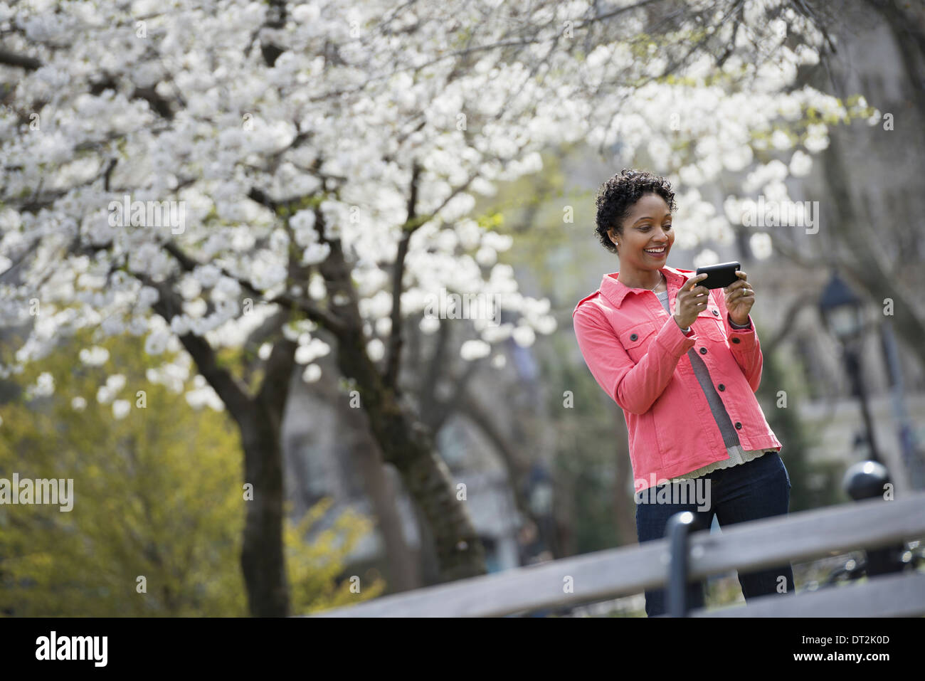 Outdoors in the city in spring time New York City park White blossom on the trees A woman holding her mobile phone and smiling - Stock Image