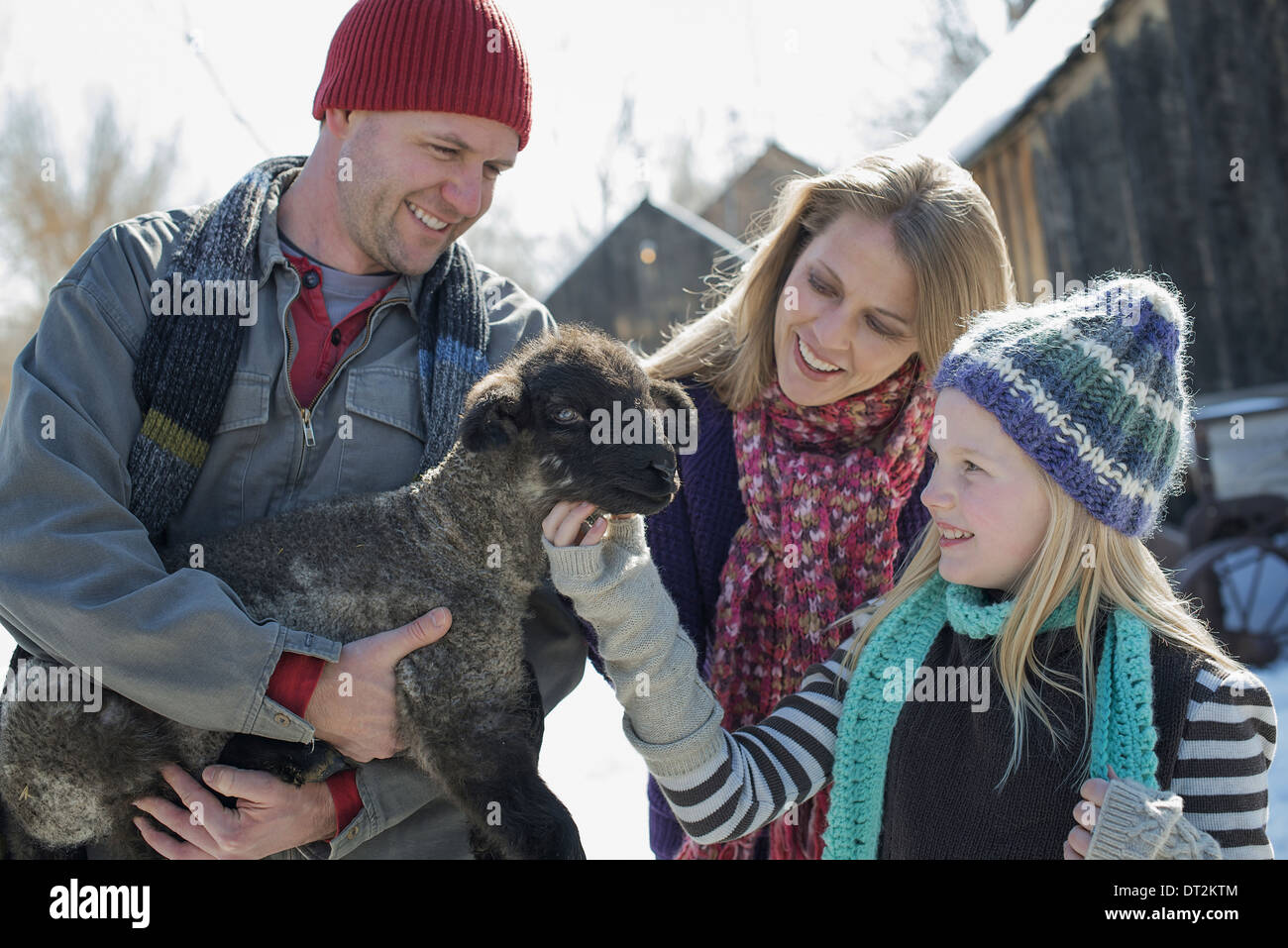 Winter scenery with snow on the ground A man holding a young lamb and a child stroking its chin - Stock Image