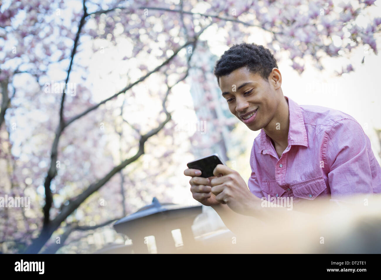 A young man in the park in spring using a mobile phone - Stock Image