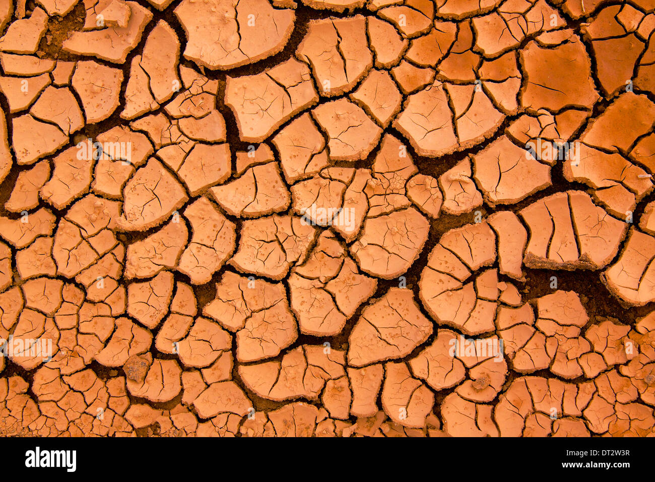Dry red volcanic mud on island of Lanzarote, Canary Islands - Stock Image