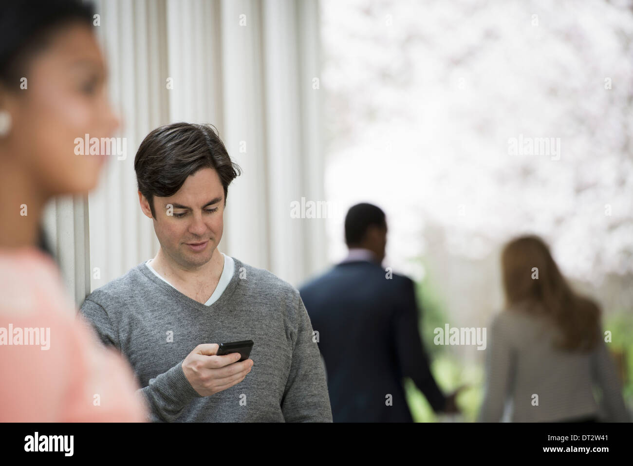 Young people springtime Men and women Two people one checking his phone Back view of two people in the park - Stock Image