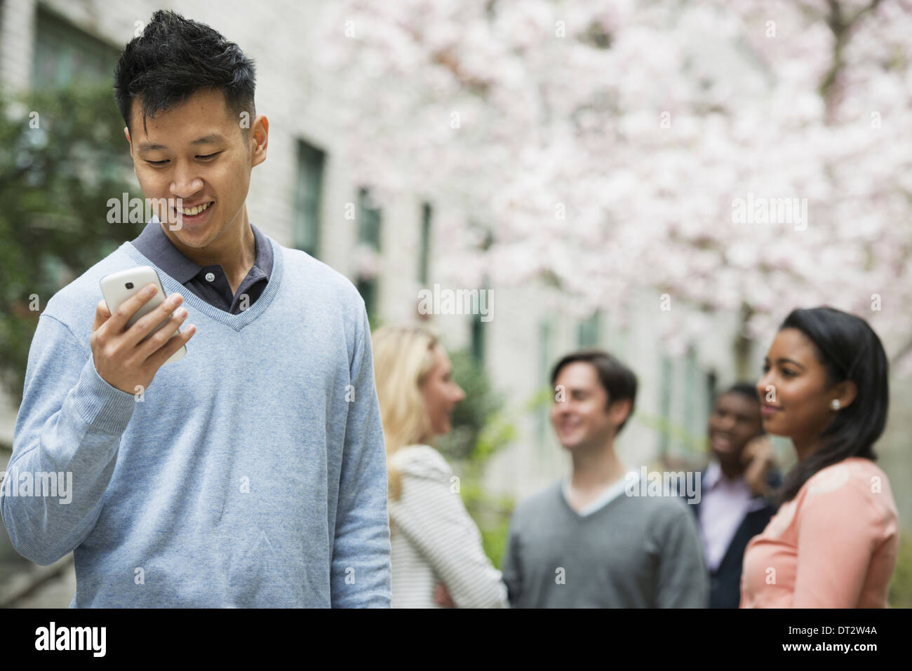 View over cityYoung people outdoors in a city park A man checking his cell phone Four people under a tree in blossom Stock Photo