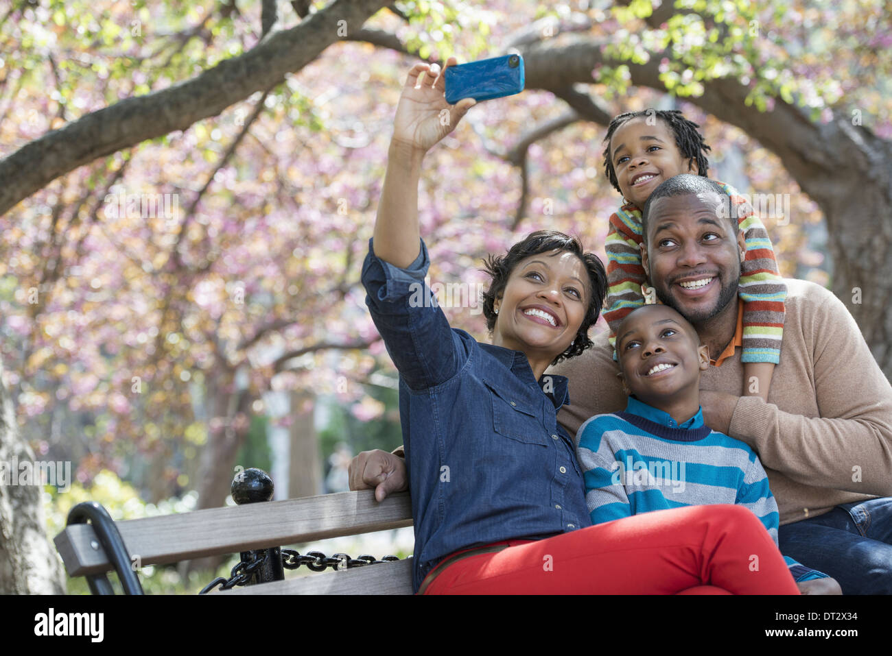Cherry blossom A woman taking a selfy picture with her smart phone of her family - Stock Image