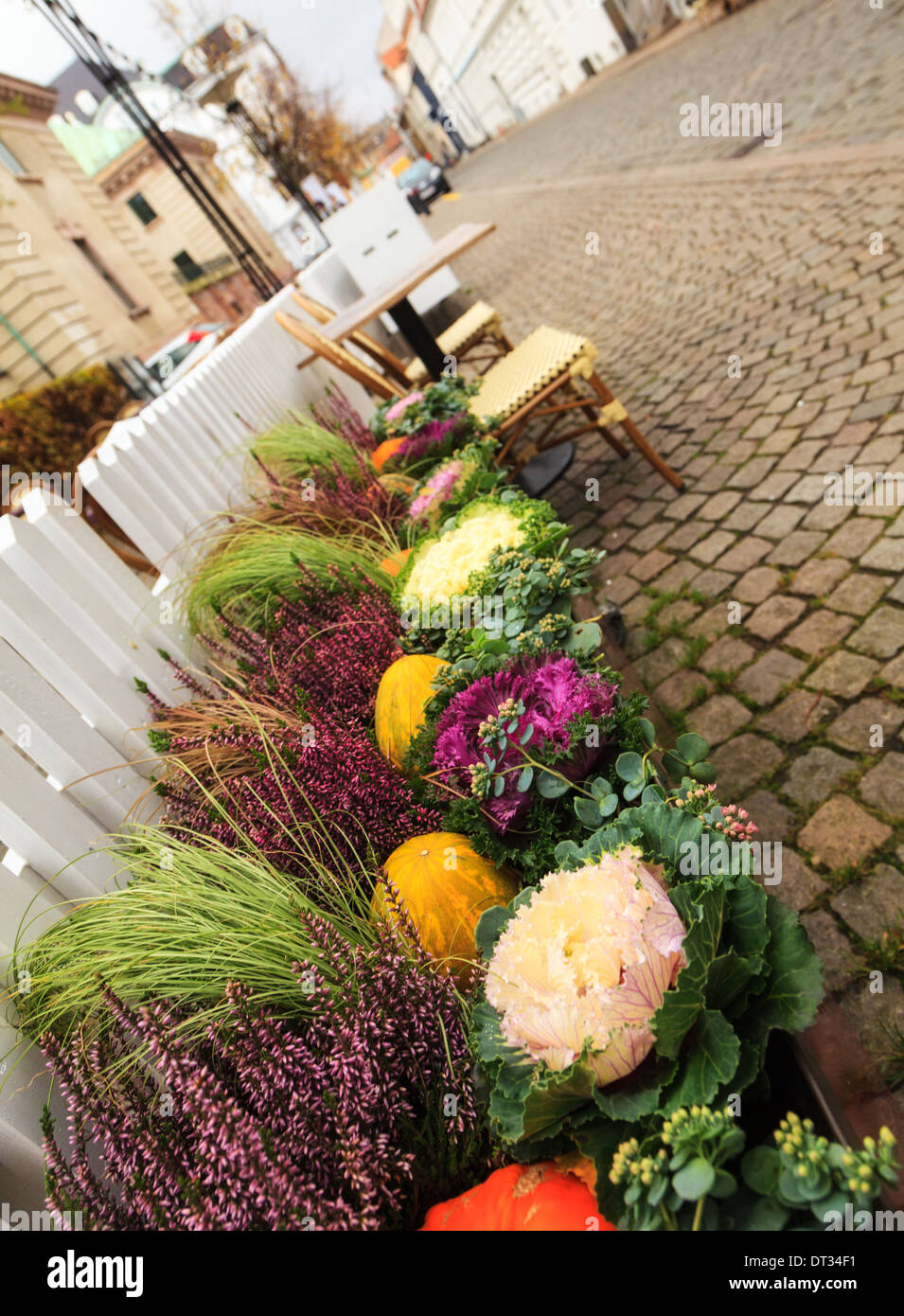 Angled shot of fruit and vegetable display on a cobbled street in the Danish city of Aarhus or Arhus - Stock Image