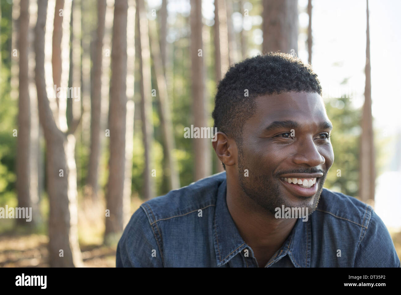 A man in a blue shirt in the shade of the trees - Stock Image