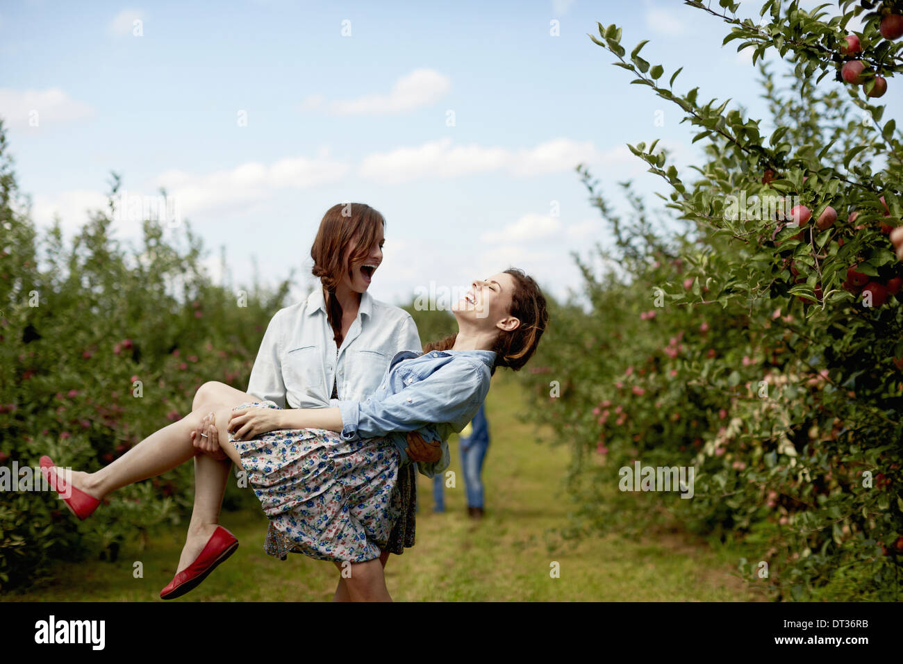 Rows of fruit trees in an organic orchard Two young women laughing one carrying the other - Stock Image