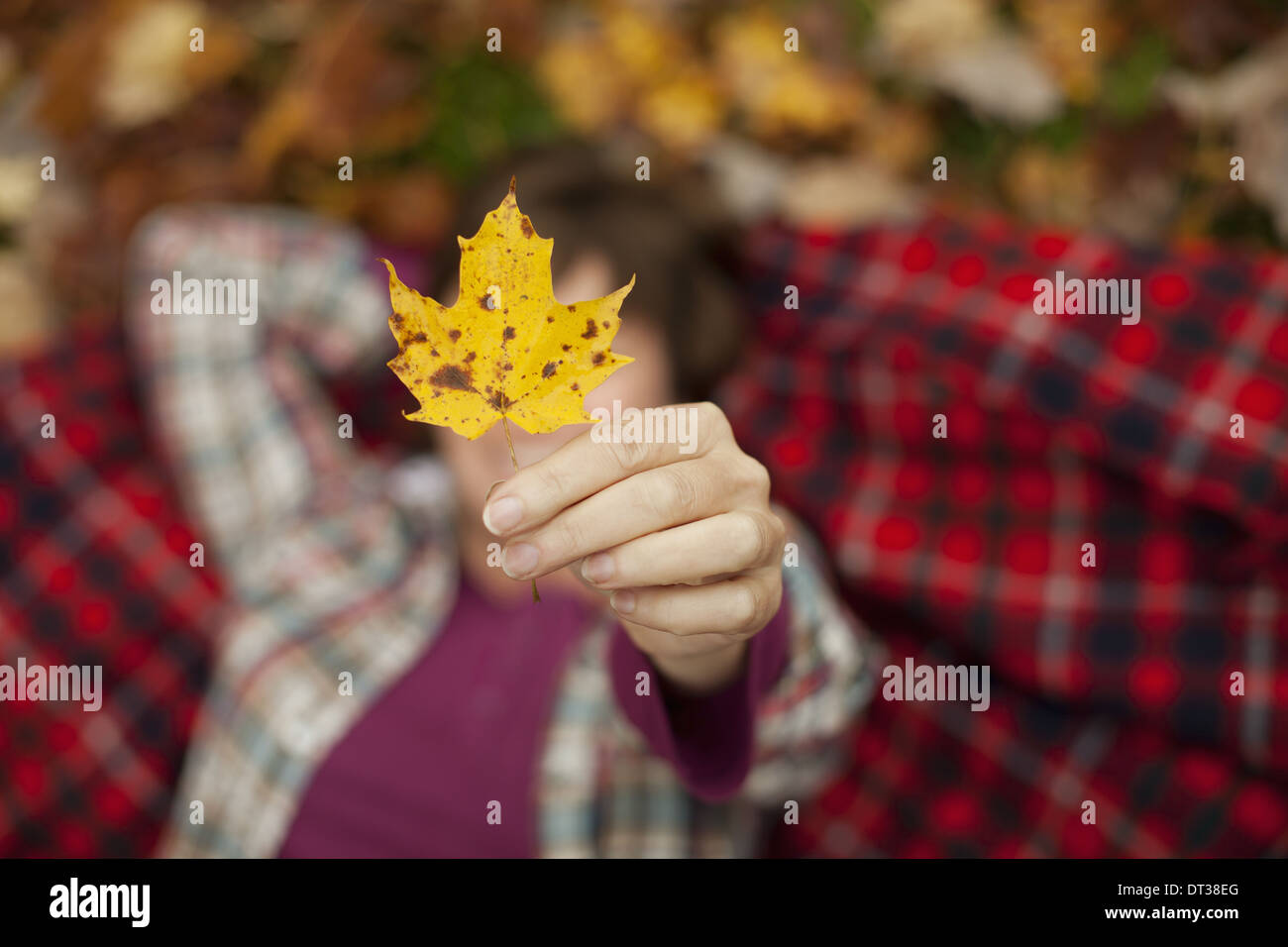 A woman lying on a red tartan picnic blanket, looking upwards, holding a maple leaf. - Stock Image