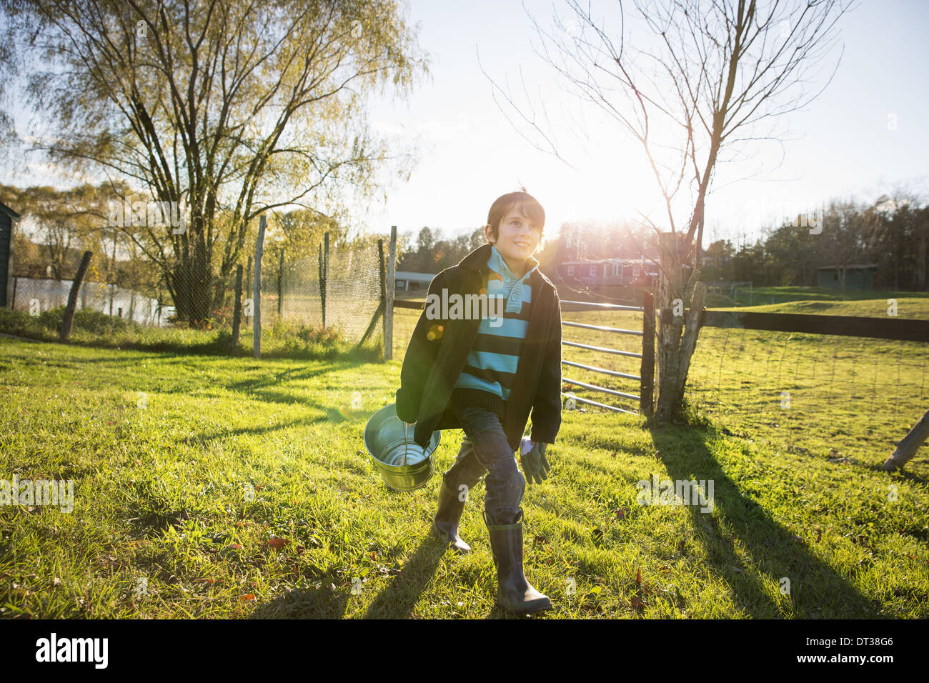 A young boy in an animal paddock, holding a bucket of feed. Animal sanctuary. - Stock Image