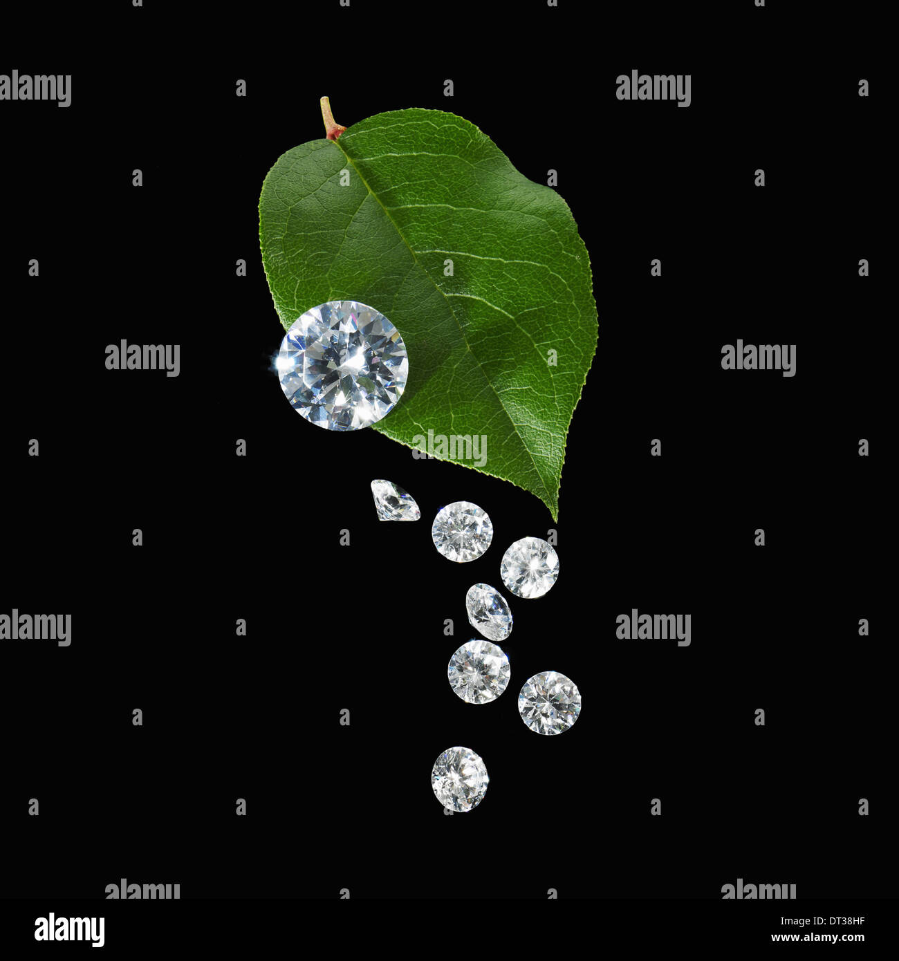A green leaf with vein markings. A group of small clear glass beads, gem cut with reflective surfaces. Stock Photo
