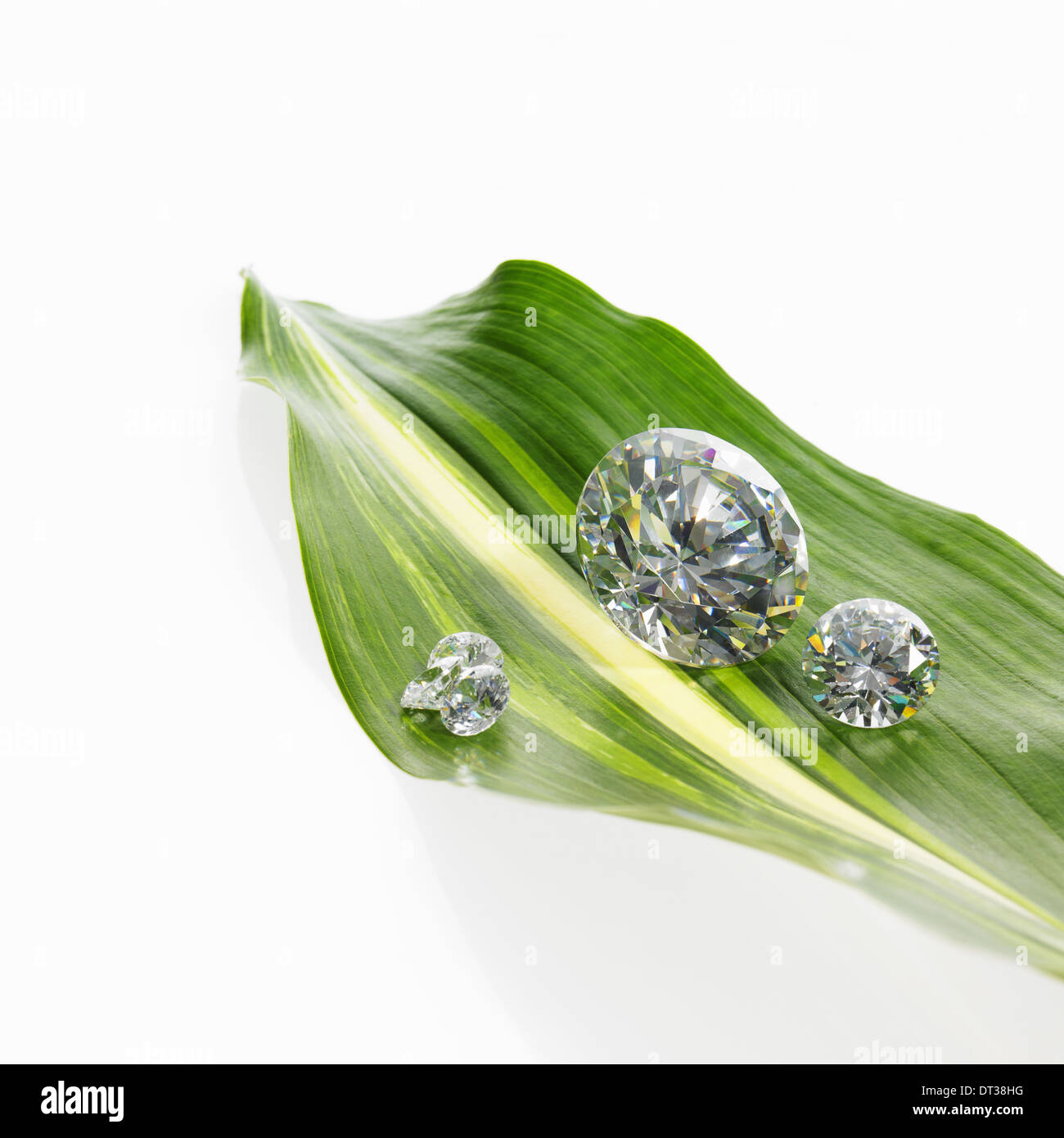 A leaf with a stripe marking with small glass reflective objects, or gems, gem cut sparkling. - Stock Image