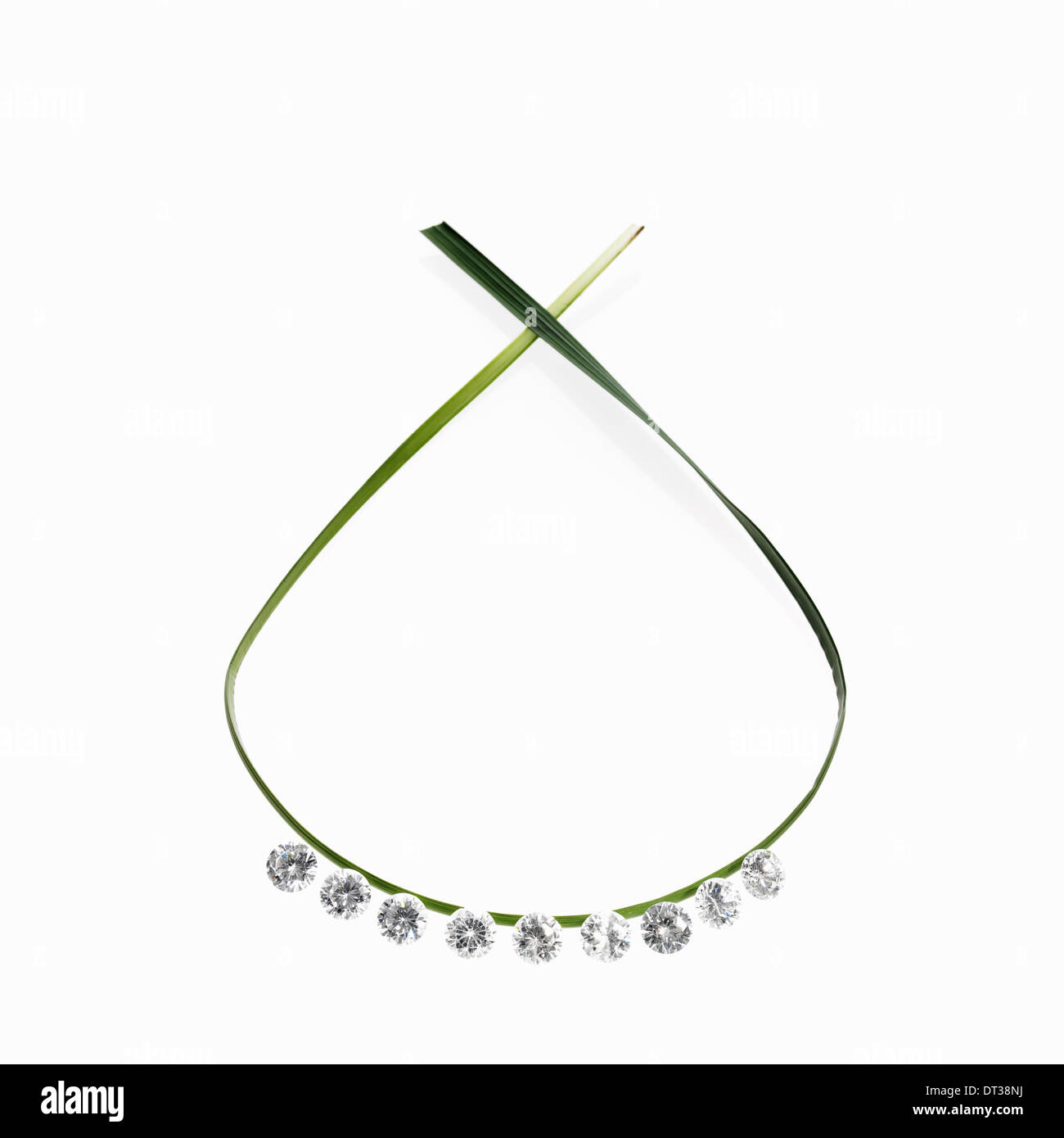 A thin green strap leaf in a loop with small sparkling gem cut clear glass beads. A necklace with a natural feel. - Stock Image