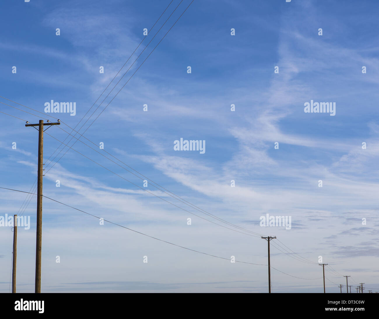 Telephone poles and power lines in a line across the landscape at Belridge, California. - Stock Image