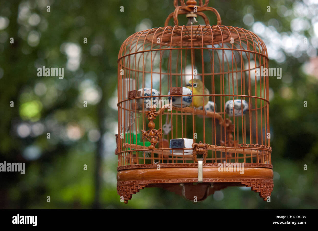 Cage In Garden Stock Photos & Cage In Garden Stock Images - Alamy