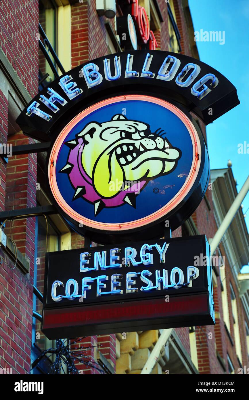 Bulldog coffeeshop sign where drugs like marijuana are sold legally in Amsterdam, Holland - Stock Image