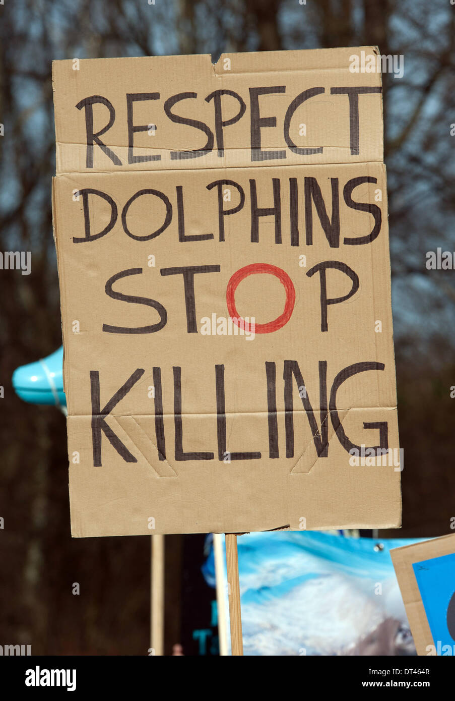 Resultado de imagem para Japan stop killing dolphins