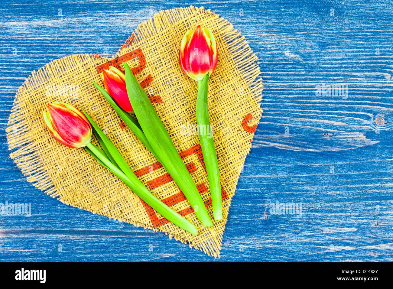 3 Tulips on heart linen - Stock Image