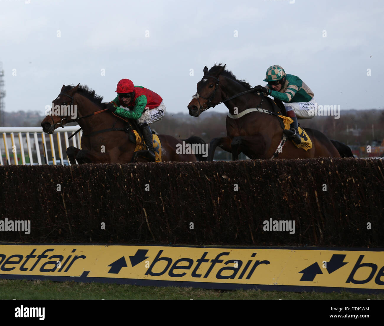 Newbury, Berkshire, UK. 08th Feb, 2014. Module (nearside ) and Dodging Bullets in the Betfair Cash Out Steeple Chase during The Betfair Super Saturday Meeting at Newbury Racecourse Credit:  Action Plus Sports/Alamy Live News - Stock Image