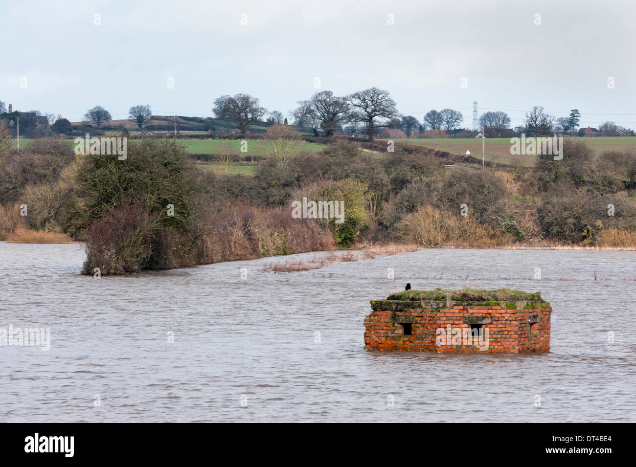 Shropshire, UK. 8th February 2014. A wartime pillbox and fields flooded by the River Severn at Cressage, near Shrewsbury, Shropshire, UK Credit:  John Bentley/Alamy Live News - Stock Image