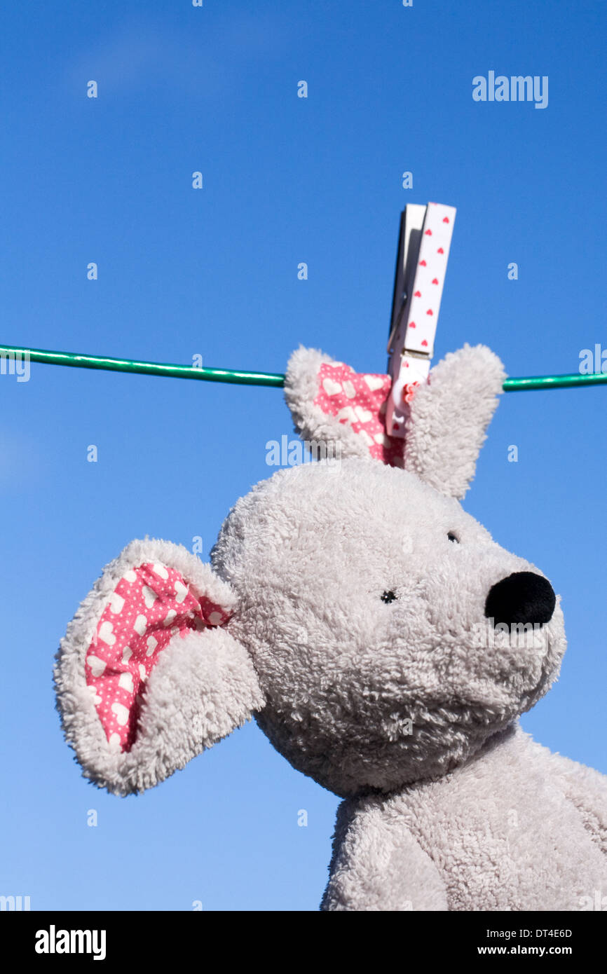 Soft toy mouse hanging on the washing line, against a blue sky background. Stock Photo