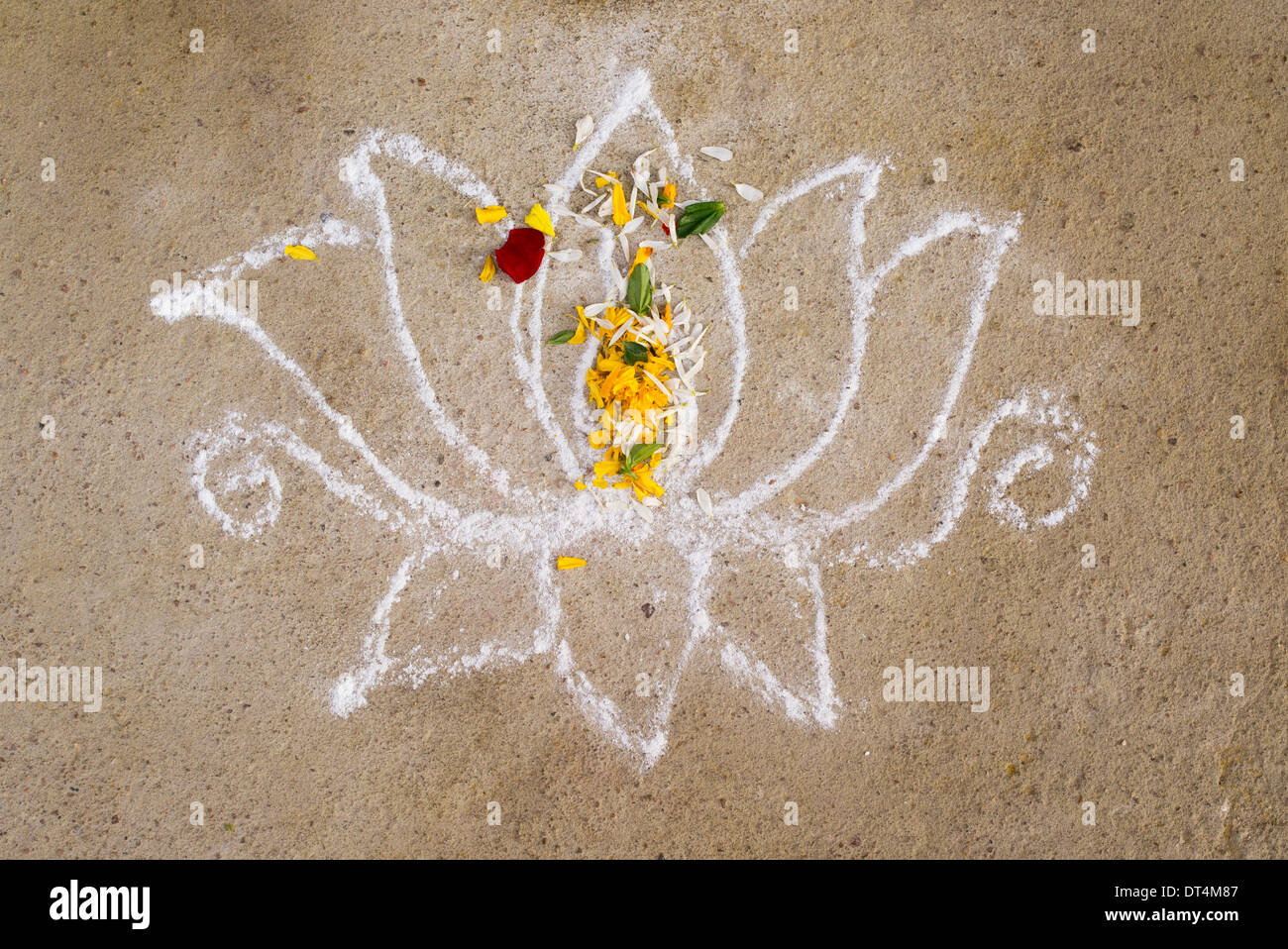 Simple Lotus Flower Rangoli Festival Design With Flower Petals In An