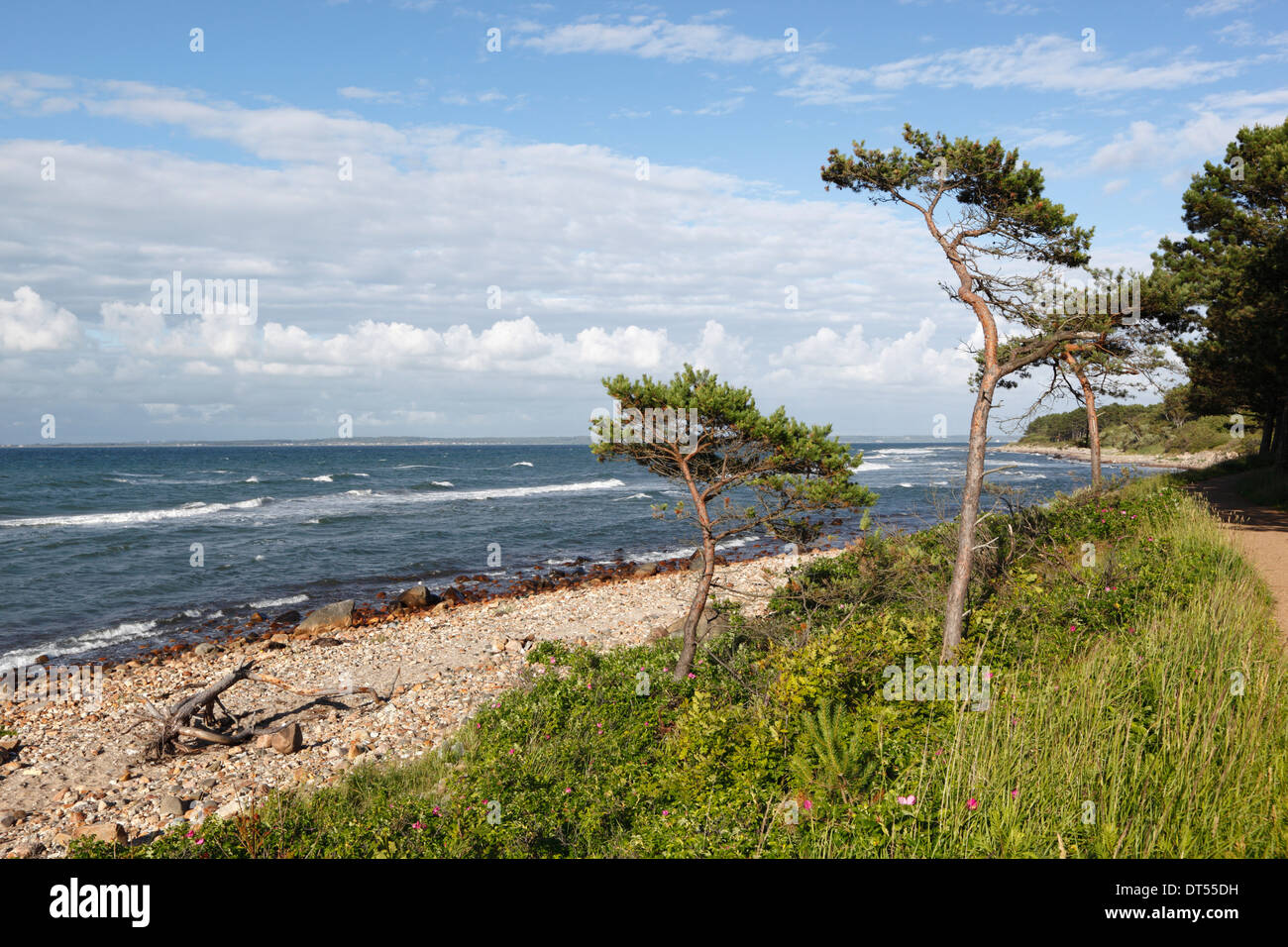 Hornbaek beach - Stock Image