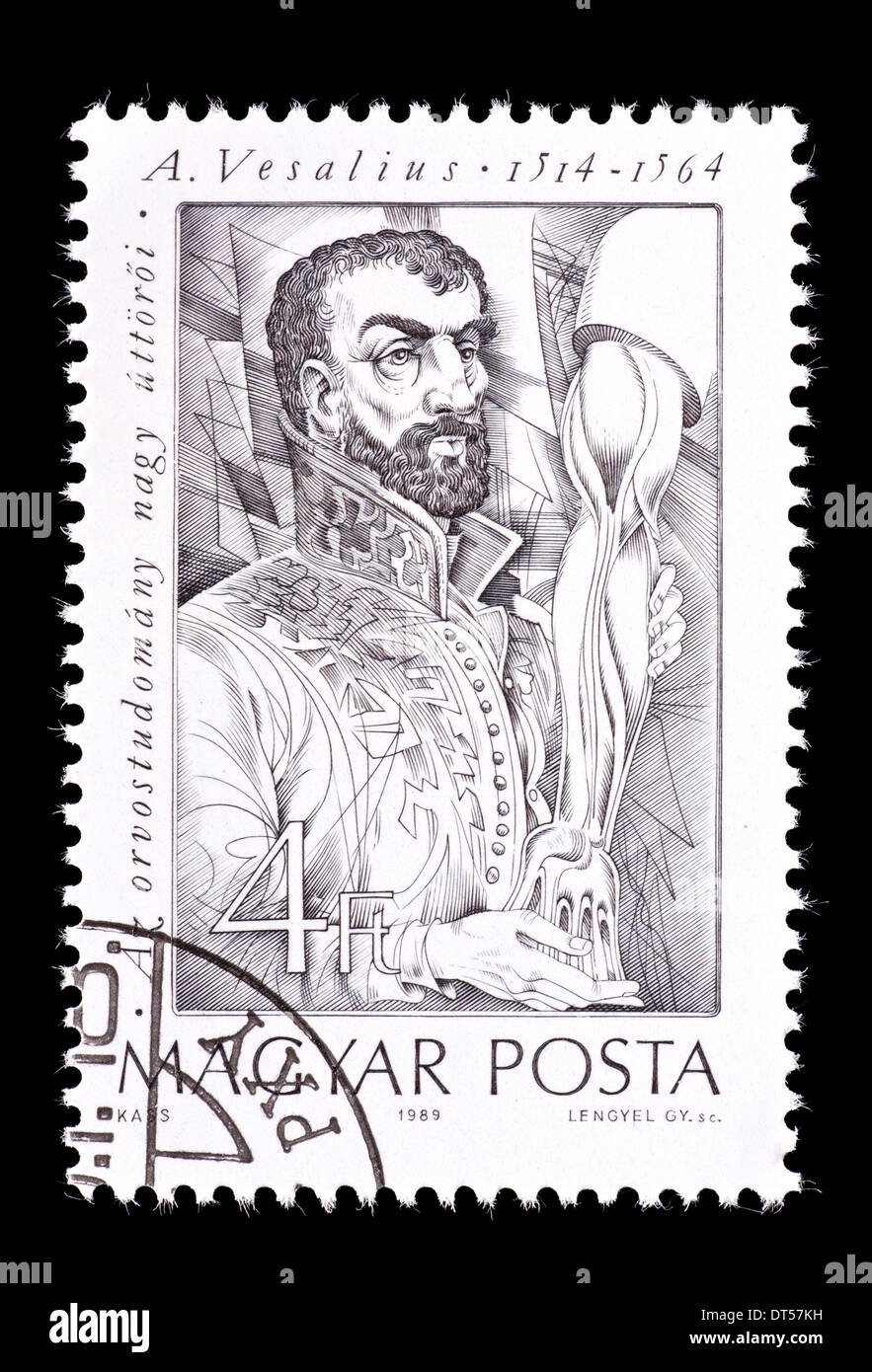 Postage stamp from Hungary depicting Andreas Vesalius, Belgian anatomist. - Stock Image