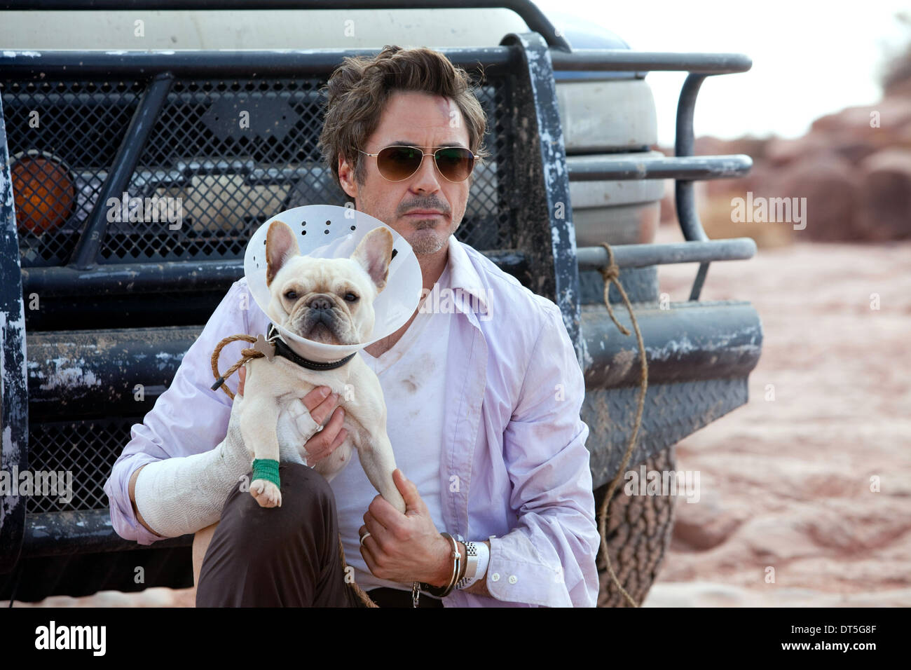 Robert Downey Jr Due Date 2010 Stock Photo Alamy