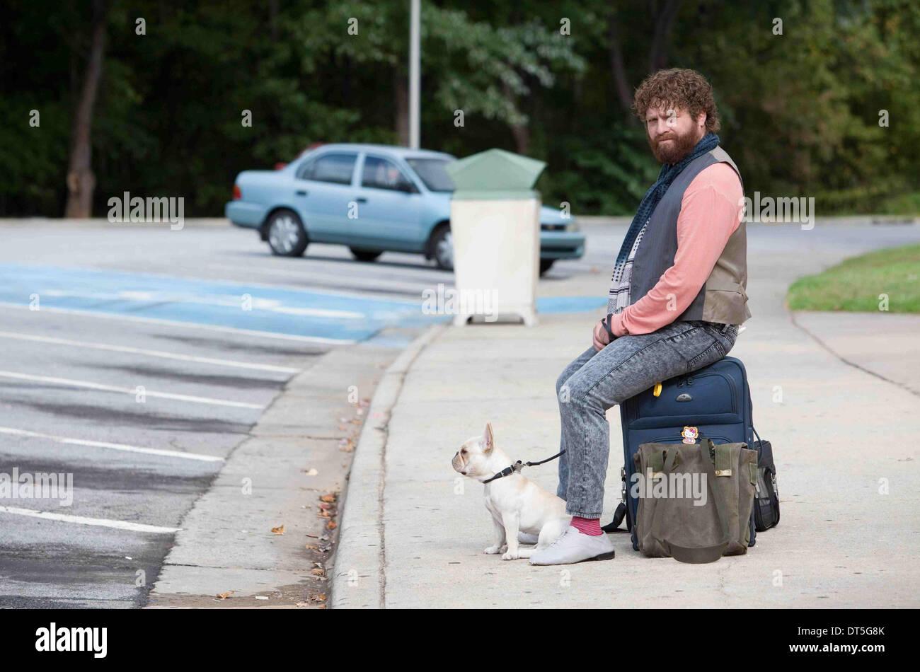 Zach Galifianakis Due Date 2010 Stock Photo Alamy