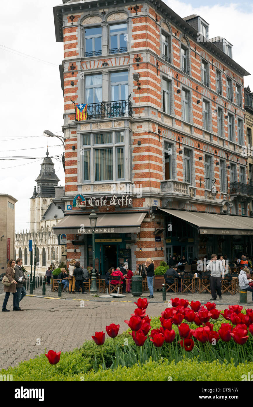 Brasserie in Brussels with tulips growing on a roundabout - Stock Image