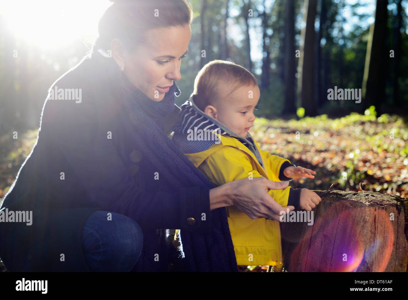 Mother and young toddler looking at tree stump - Stock Image