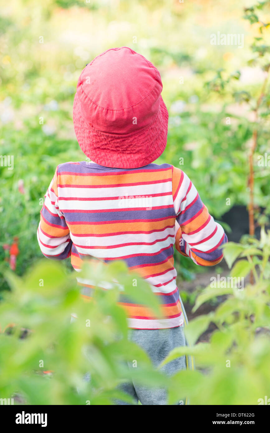 Tranquil summer scene. Young girl standing in garden, watching plants and flowers. Stock Photo