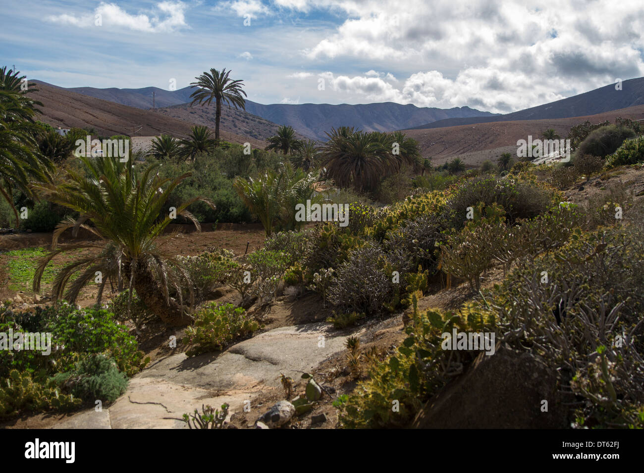 View of countryside in Betancuria, Stock Photo