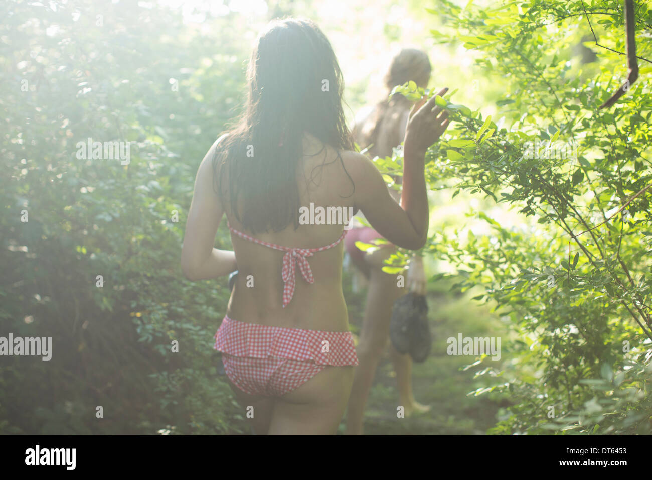 Friends walking on forest trail - Stock Image