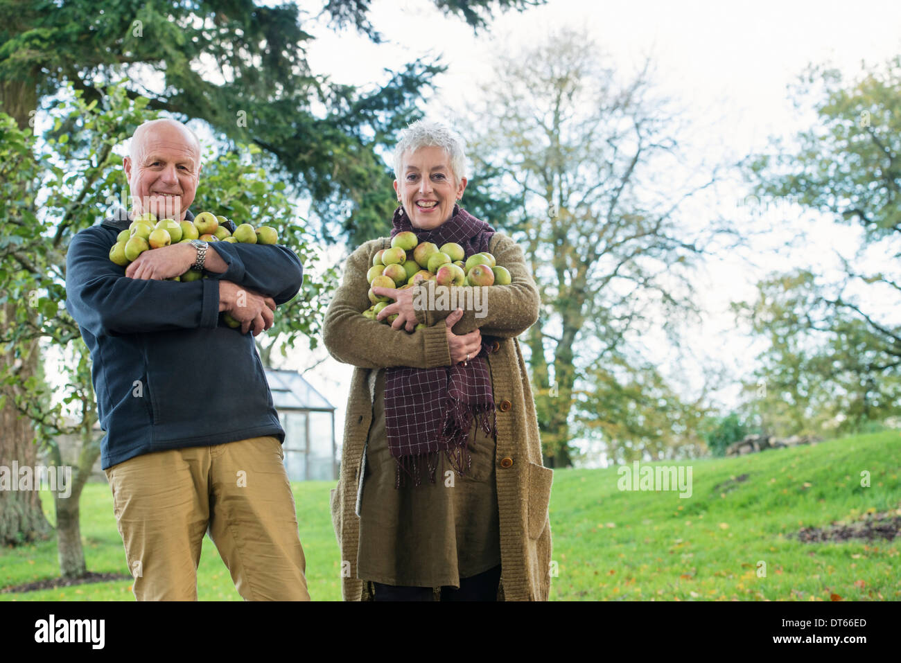 Happy senior couple with armful of apples - Stock Image