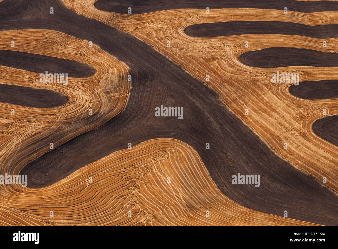 Farmland landscape, with ploughed fields and furrows in Palouse, Washington, USA. An aerial view with natural patterns. - Stock Image