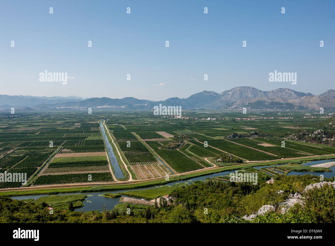 planted lowland Between Split and Dubrovnic Stock Photo