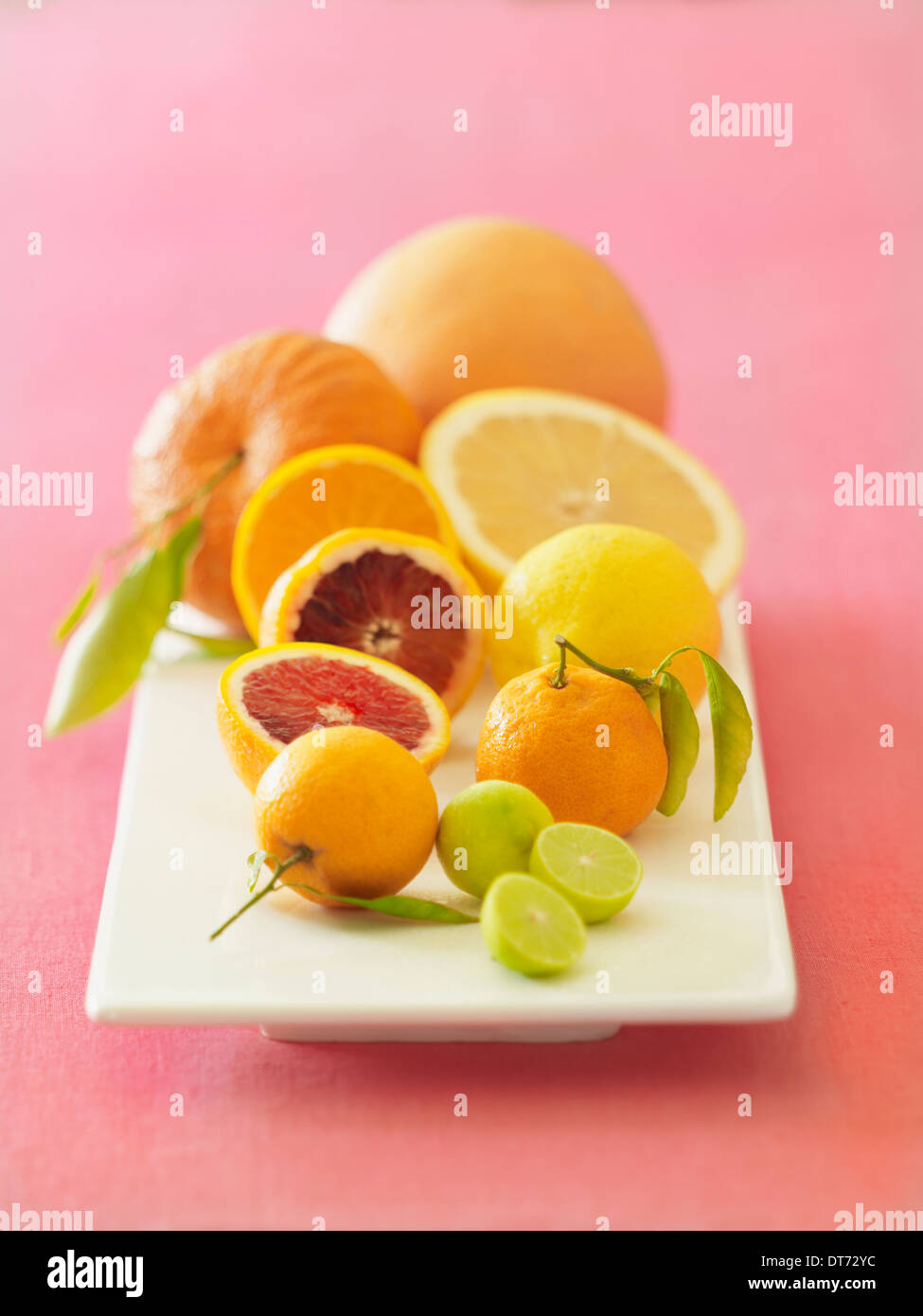 A white platter with oranges, blood oranges, grapefruit, lemon and limes on a pink fabric background. - Stock Image