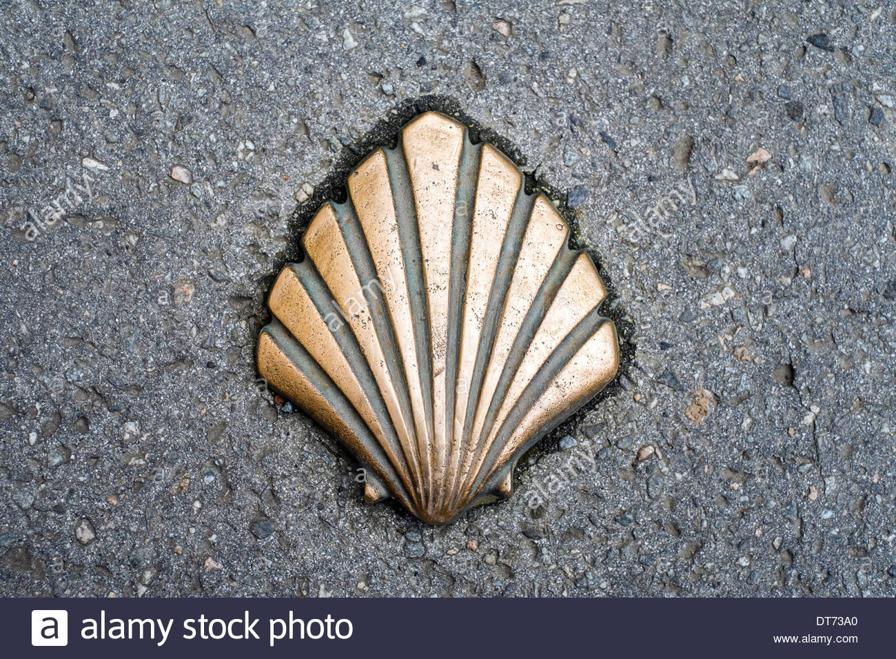 A Scallop Shell Symbol Depicting The Way Of Saint James Camino De