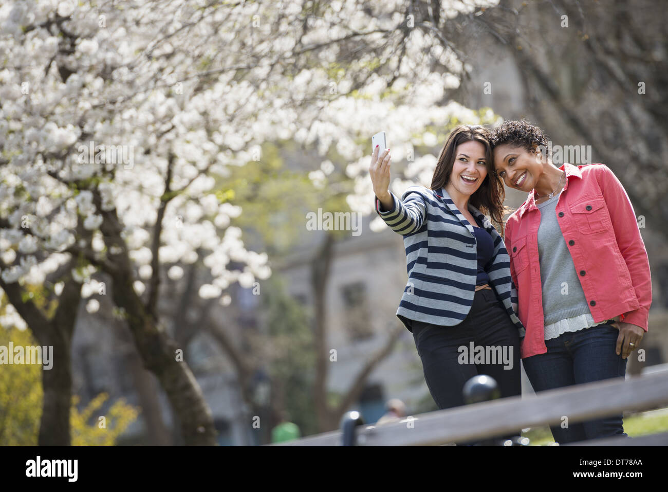 spring time. New York City park. A young woman holding out a phone to take a photograph of herself and a companion. - Stock Image