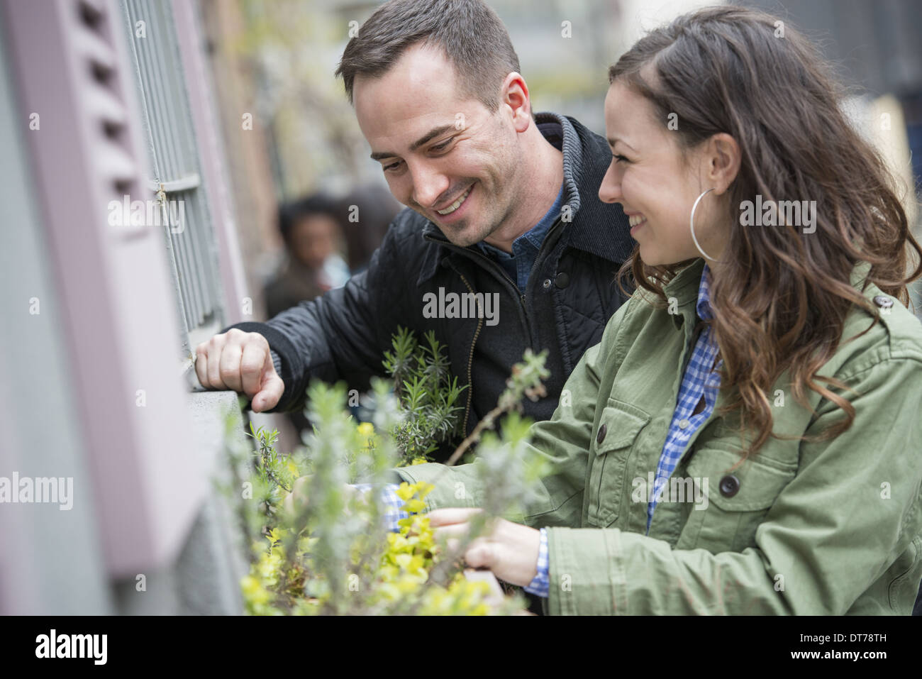 A man and a woman tending a window box on a city street. Spring flowers. - Stock Image