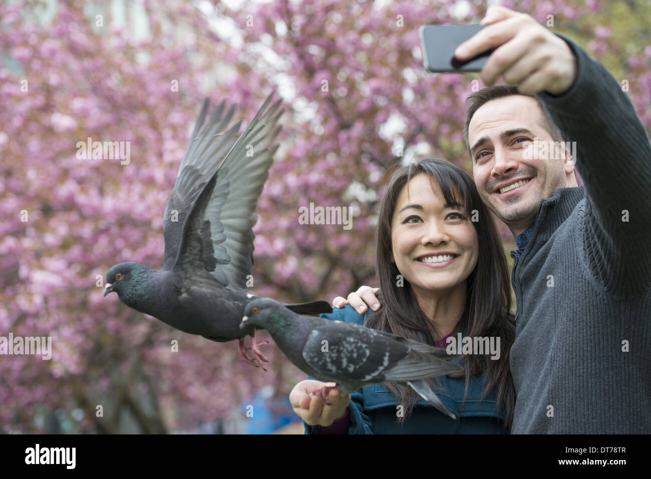 A couple, a man and woman, in the park, taking a selfy, self portrait with a mobile phone. Two pigeons perched on her wrist. - Stock Image