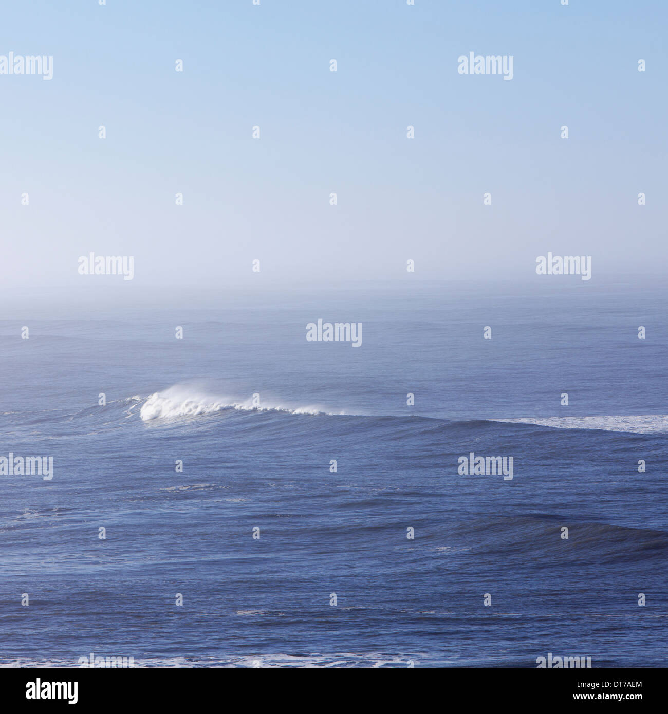 A view over the ocean and a wave with a developing white crest Olympic national park Washington USA - Stock Image