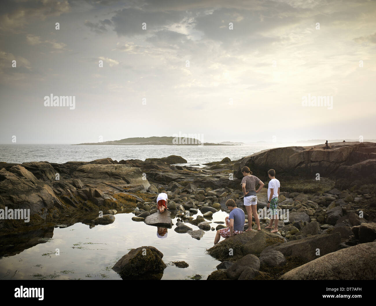 A group of people on the shore rock pooling and exploring the marine life View to an island offshore USA Stock Photo