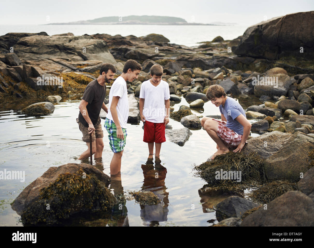 A small group of people standing in shallow water rock pooling finding marine life on the beach USA - Stock Image